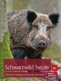 Schwarzwild heute (Mängelexemplar)