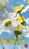 Das praktische Buch der Heilpflanzen (Mängelexemplar)