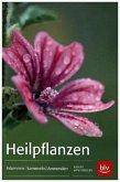 Heilpflanzen (Mängelexemplar)