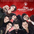 Sing Meinen Song-Das Weihnachtskonzert Vol.4