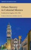 Urban Slavery in Colonial Mexico: Puebla de Los Ángeles, 1531-1706