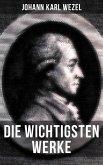 Die wichtigsten Werke von Johann Karl Wezel (eBook, ePUB)