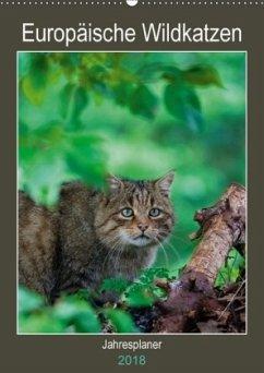 9783669394369 - Webeler, Janita: Europäische Wildkatzen - Jahresplaner (Wandkalender 2018 DIN A2 hoch) - Buch