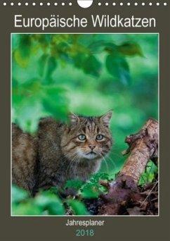 9783669394345 - Webeler, Janita: Europäische Wildkatzen - Jahresplaner (Wandkalender 2018 DIN A4 hoch) - Buch