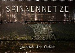 9783669394628 - Roder, Peter: Spinnennetze - Wunder der Natur (Wandkalender 2018 DIN A2 quer) - Buch