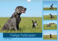 9783669394796 - Hultsch, Heike: Fellige Feldnasen (Wandkalender 2018 DIN A4 quer) - Buch
