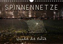 Spinnennetze - Wunder der Natur (Wandkalender 2018 DIN A4 quer)