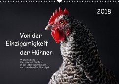 9783669394918 - Peters, Birte: Von der Einzigartigkeit der Hühner (Wandkalender 2018 DIN A3 quer) - Buch
