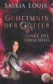 Funke des Erwachens / Geheimnis der Götter Bd.1