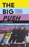 The Big Push (eBook, ePUB)