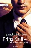 Prinz Kalil - Falke des Nordens (eBook, ePUB)