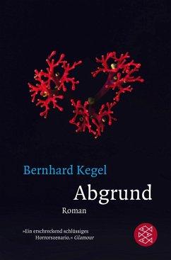 Abgrund - Kegel, Bernhard