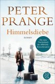 Himmelsdiebe (eBook, ePUB)