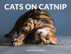Cats on Catnip - Marttila, Andrew