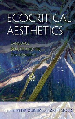 Ecocritical Aesthetics: Language, Beauty, and the Environment