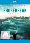 Shorebreak - Die perfekte Welle