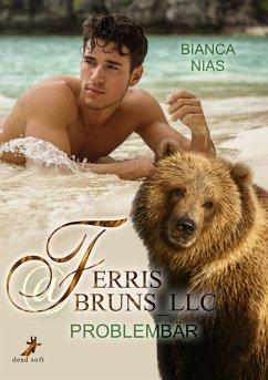 Ferris@Bruns_LLC (eBook, ePUB)