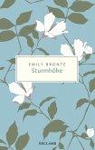 Sturmhöhe (eBook, ePUB)