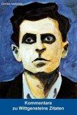 Kommentare zu Wittgensteins Zitaten