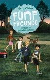 Fünf Freunde geraten in Schwierigkeiten / Fünf Freunde Bd.8 (Mängelexemplar)