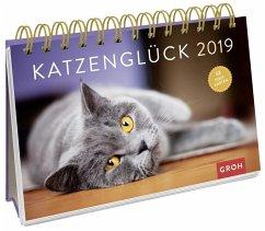 Katzenglück 2019