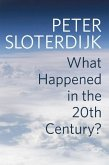 What Happened in the Twentieth Century?