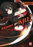 Akame ga KILL! Bd.13