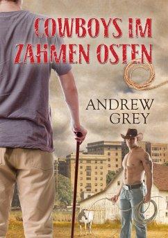 Cowboys im zahmen Osten (eBook, ePUB)