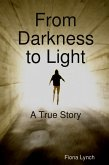 From Darkness to Light: A True Story (eBook, ePUB)