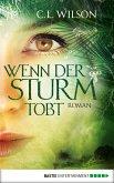 Wenn der Sturm tobt (eBook, ePUB)
