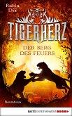 Der Berg des Feuers / Tigerherz Bd.3 (eBook, ePUB)