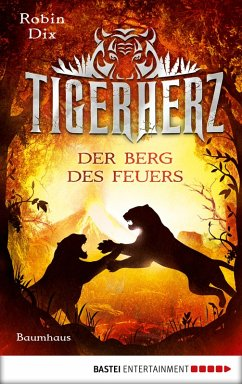 Der Berg des Feuers / Tigerherz Bd.3 (eBook, ePUB) - Dix, Robin