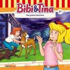 Bibi & Tina - Folge 87: Das große Unwetter (MP3-Download)