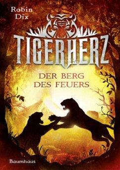 Der Berg des Feuers / Tigerherz Bd.3 - Dix, Robin