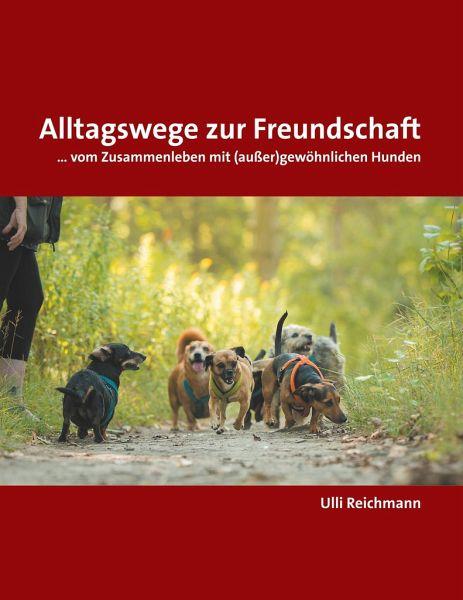 Alltagswege zur Freundschaft - Reichmann, Ulli