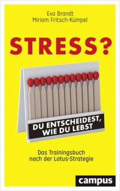 Stress? Du entscheidest, wie du lebst - Brandt, Eva; Fritsch-Kümpel, Miriam