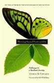 Thriving Beyond Sustainability (eBook, ePUB)
