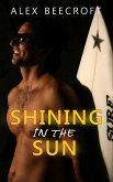 Shining in the Sun (eBook, ePUB)