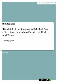 Rückblick: Strichjungen am Bahnhof Zoo - Ein Klientel zwischen Elend, Lust, Risiken und Tabus (eBook, ePUB)