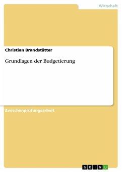 Grundlagen der Budgetierung (eBook, ePUB)