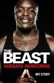 The Beast (eBook, ePUB)
