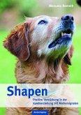 Shapen