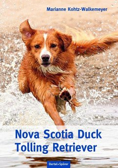 Nova Scotia Duck Tolling Retriever - Kohtz-Walkemeyer, Marianne