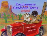 Road Runners & Sandwich Terns (eBook, ePUB)