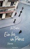 Ein Ire in Paris (eBook, ePUB)
