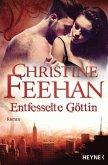 Entfesselte Göttin / Leopardenmenschen Bd.7 (eBook, ePUB)