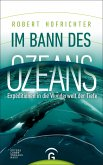 Im Bann des Ozeans (eBook, ePUB)