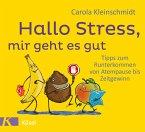Hallo Stress, mir geht es gut (eBook, ePUB)
