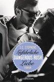 Dangerous Rush. Gefährliche Liebe / Rush Trilogie Bd.2 (eBook, ePUB)