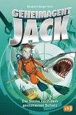 Die Suche nach dem gestohlenen Schatz / Geheimagent Jack Bd.2 (eBook, ePUB)